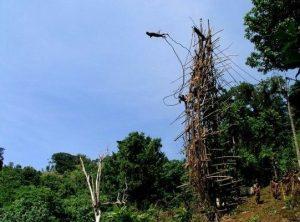 Land Diving, Pentecost Island (forerunner of bungee jumping)